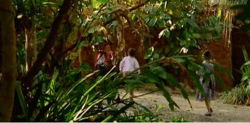 允许女儿不上学的她惊动央视。29岁裸辞白领,和丈夫带着两个精灵般的女儿重建440万㎡雨林,7年后连LV都找上门-金融微周刊