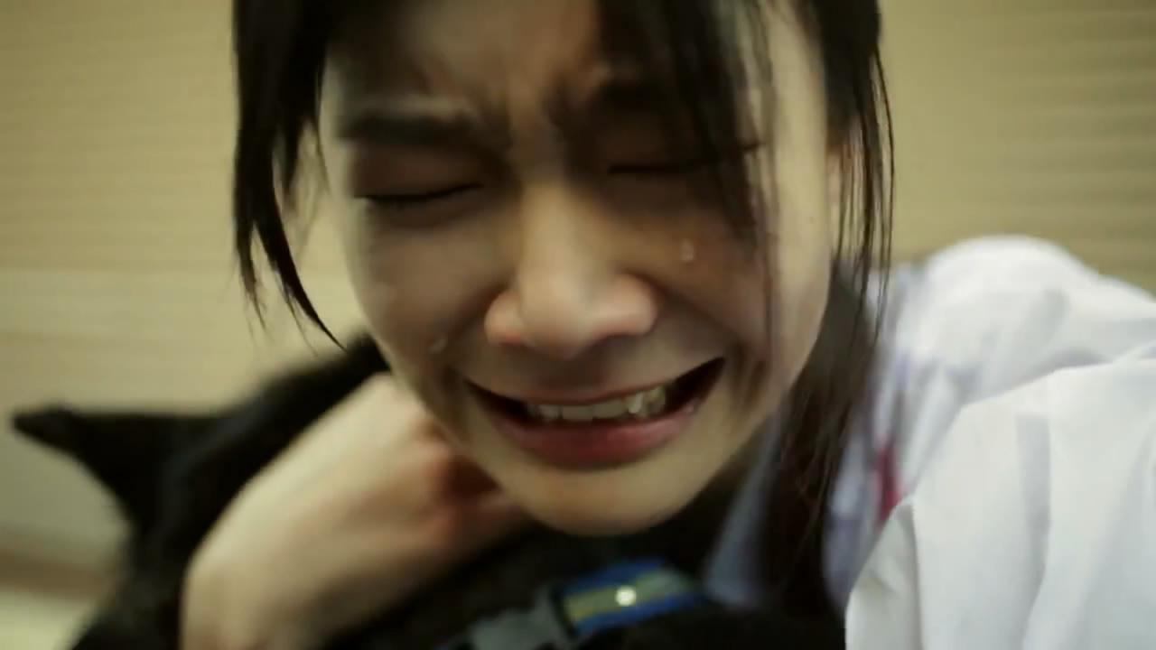 短片 | 泰国最新催泪感人广告《它咬了她,却成就了她》-金融微周刊